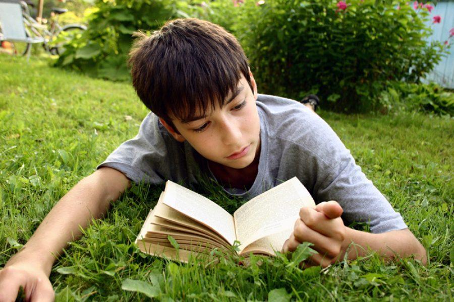Animación á lectura